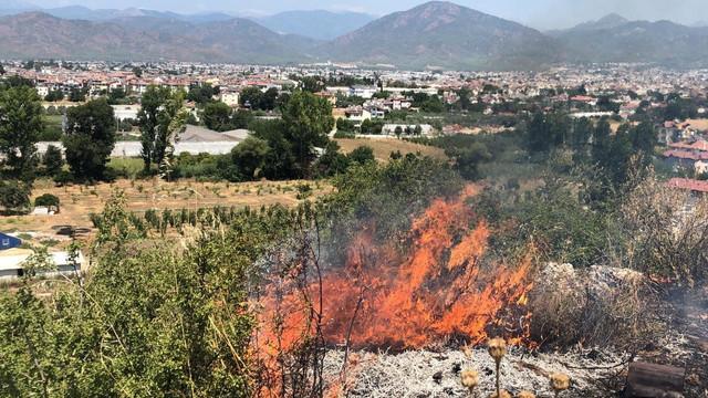 Fethiye'de makilik alanda yangın çıktı!
