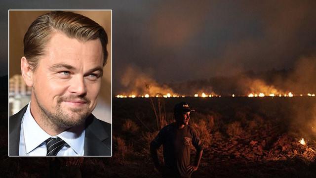 Leonardo DiCaprio'dan Amazonlar'a 5 milyon dolar bağış