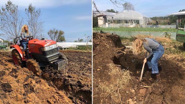 Sosyetik çiftçi: Biricik Suden
