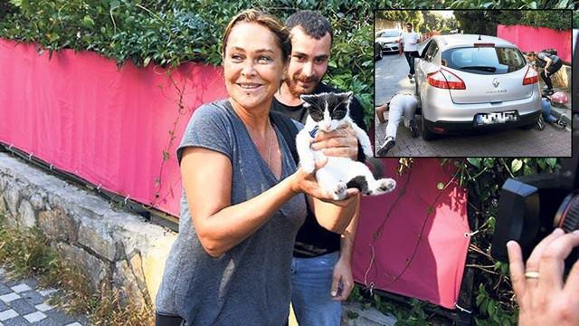 Hülya Avşar'ın yavru kedi paniği