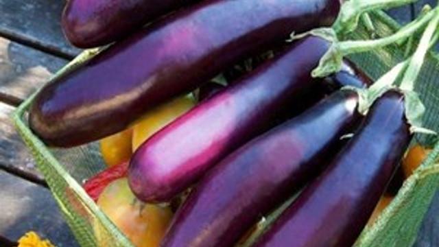Cilt kanserine patlıcan önlemi