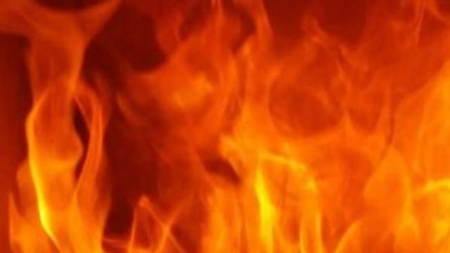 Büyükada'da yangın paniği!