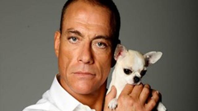 Van Damme'ın Bodrum'a neden geldiği ortaya çıktı