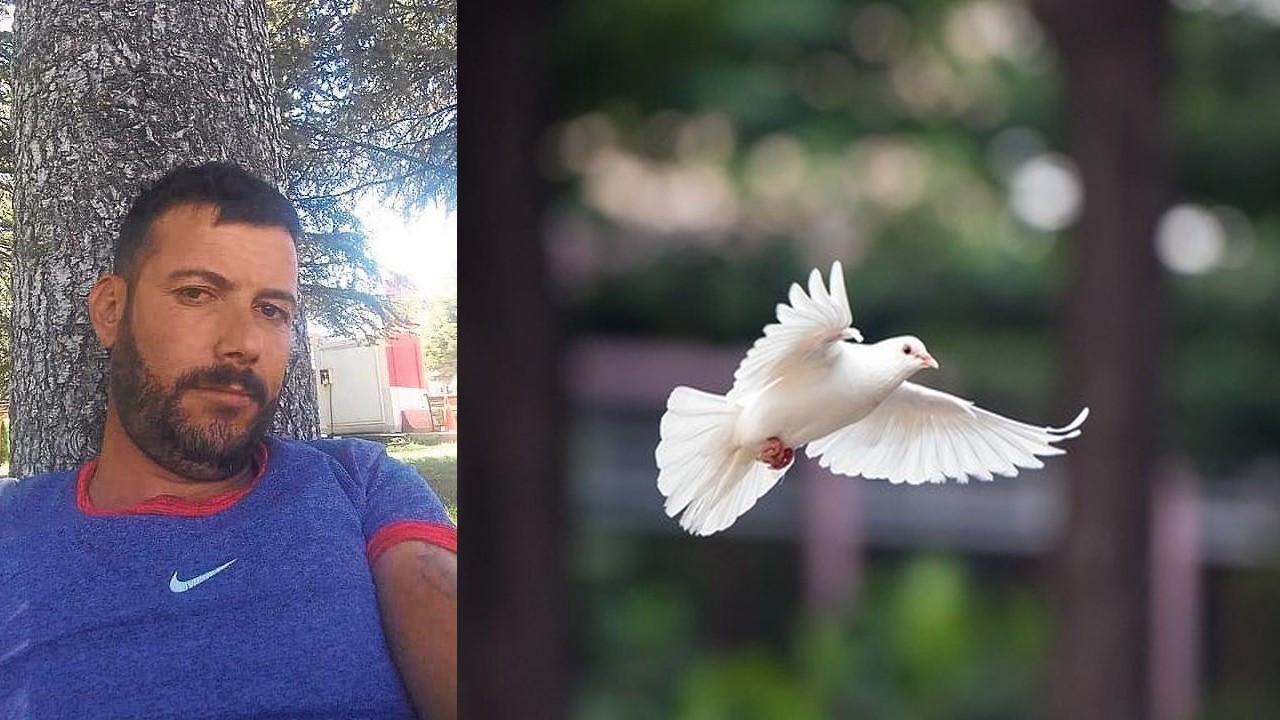 Afyonkarahisar'da şoke eden güvercin kavgası!