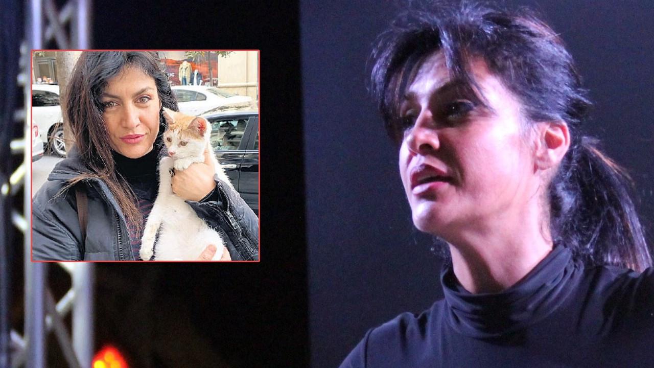 Tuğba Ekinci sokak kedisini sahiplendi