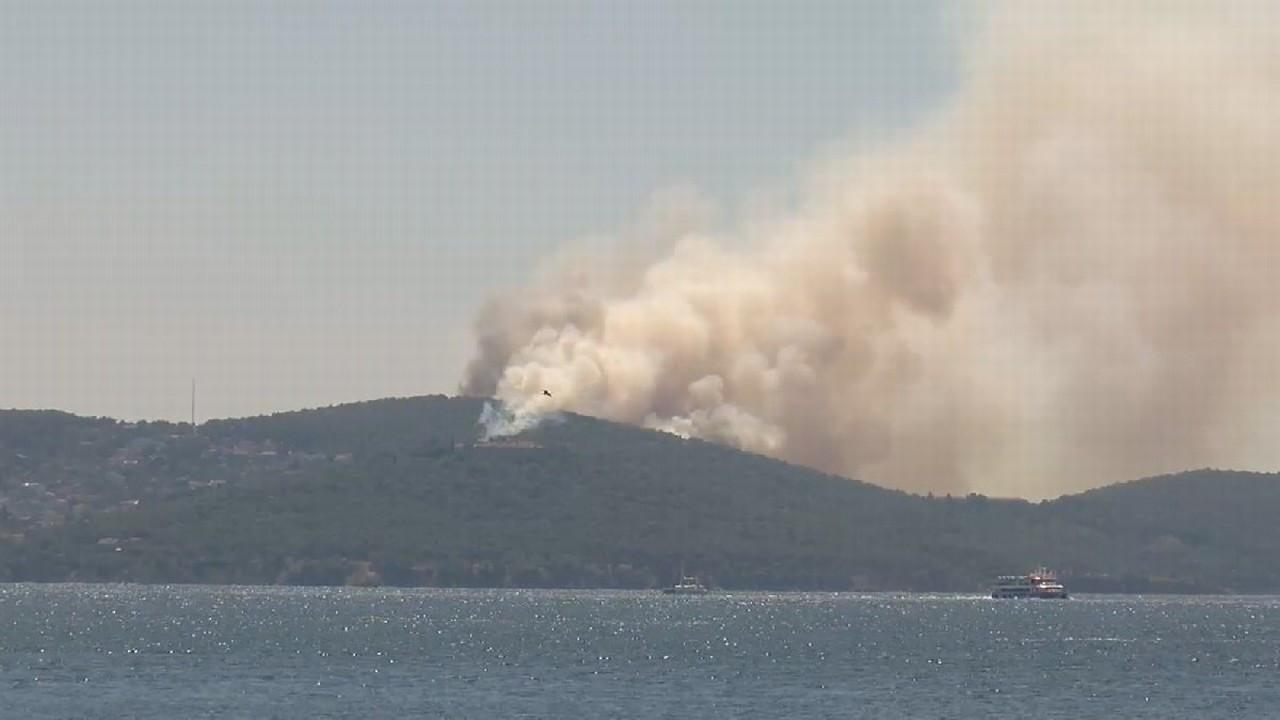 Heybeliada'da orman yangını çıktı!